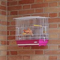 Ferplast Jaula para Canarios y pequeños pájaros exóticos GIUSY con ...