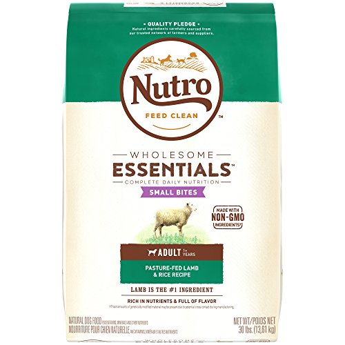 Nutro WHOLESOME ESSENTIALS Small Bites Adult Pasture-Fed Lamb & Rice Recipe 30 Pounds Best Dog Food Shiny Coat