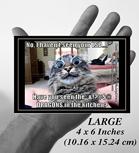 [LSD DRAGONS— 1 Large funny humorous fridge magnet approx 4x6 inches (10.16 x 15.24 cm), meme decorative magnetic sign plaque photo, pet tabby cat accidentally eats LSD sees dragons in the kitchen!] (Stoner Costume Diy)