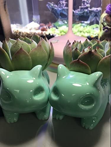 Orililory Funny Succulent Planters Bulbasaur Flower Pot Plant Display Flowers Vase Color Green