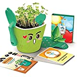 Kid planter OC1009 Kit educativo para germinar con maceta auto-regable para niños SMART GARDEN