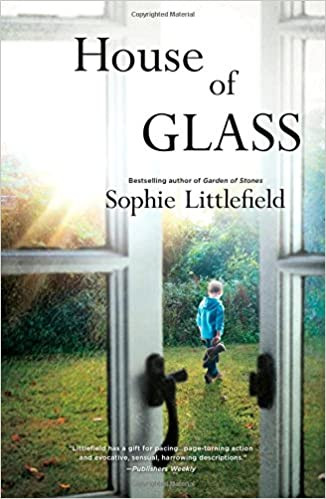 the house of glass book