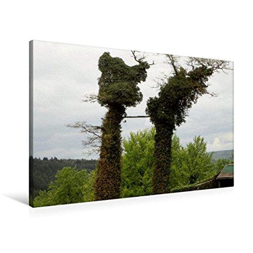 Calvendo Premium Textil-Leinwand 90 cm x 60 cm Quer, Zugewachsene Bäume   Wandbild, Bild auf Keilrahmen, Fertigbild auf Echter Leinwand, Leinwanddruck  Zugewachsenes Natur Natur B01KTE7UOU Klassische Puzzles Spielzeugwelt, glücklich und grenzenlos  