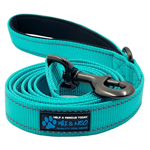 Max and Neo Reflective Nylon Dog Leash - We Donate a Leash to a Dog Rescue for Every Leash Sold (Teal, 6x1)