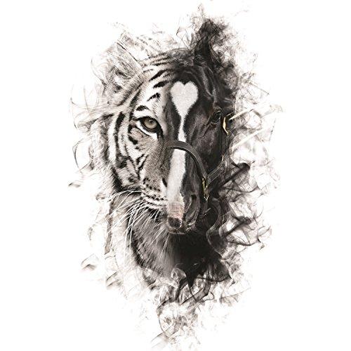Para Sacarte De Mi Vida [feat. Los Tigres Del Norte]