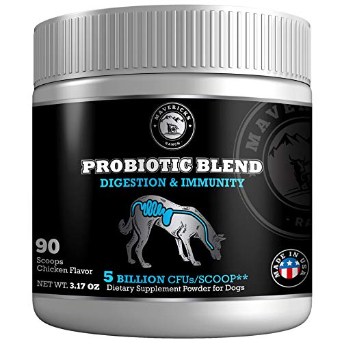 Mavericks Ranch Probiotics for Dogs | 9 Canine Friendly Strains | 5 Billion CFUs/Scoop | Unique Gut Flora Digestive Enzymes Powder | 30-90 Day Support | 100% Natural Pet Supplement & Made in USA | ()