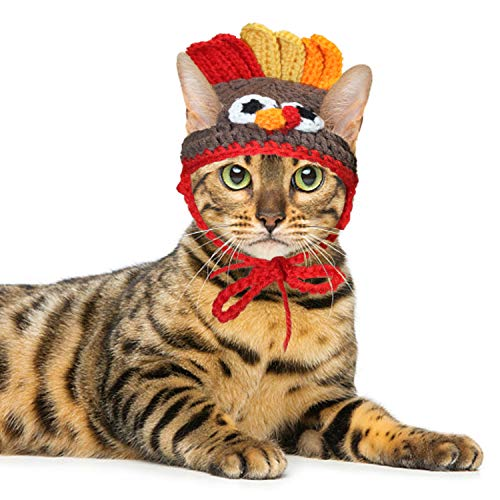 RYPET Cat Turkey Costume – Pet Turkey Hat Thanksgiving Apparel for Cats Small Dogs
