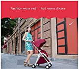 HGYG Lightweight Baby Stroller fold Newborn Infant Umbrella Carriage City Select High Landscape Trolley (Gray)