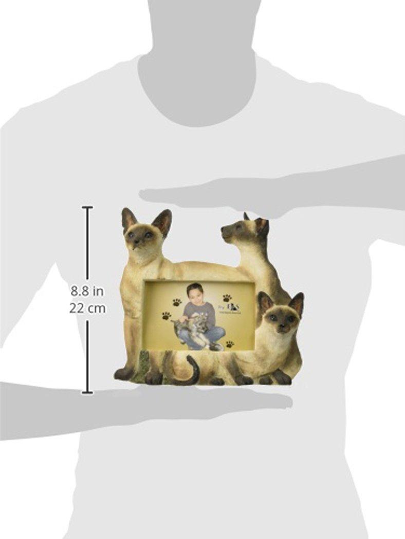 E&S Pets 35297-6 Large Cat Frames by E&S Pets (Image #1)