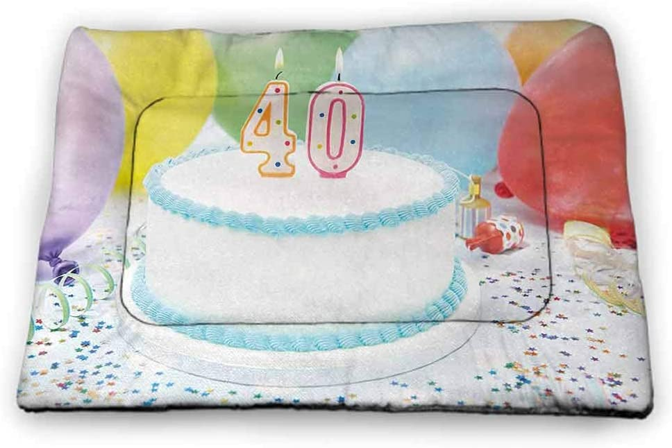 Nomorer Dog Food Mat 40th Birthday Easy-to-Clean Celebration Theme Clouds in The Blue Sky and Paper Plane Flying Print Blue and White