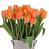 Stargazer Barn - 24 Stems Cheery Orange Juice Tulips with Rustic Décor Style Galvanized Vase - Direct From Farm - 2 Dozen Orange Tulips - Fresh Cut - Sustainably Grown in California - Orange Flowers