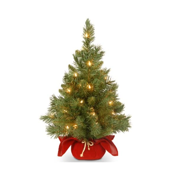 National-Tree-24-Inch-Majestic-Fir-Christmas-Tree-with-35-Clear-Lights-in-Burgundy-Cloth-Bag-MJ3-24BGLO-1