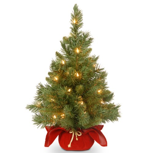 National Tree 24 Inch Majestic Fir Christmas Tree with 35 Clear Lights in Burgundy Cloth Bag (MJ3-24BGLO-1) - Clear Christmas Tree