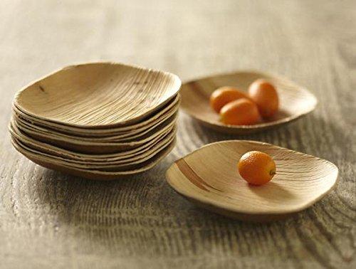 Verterra Compostable Dinnerware- 4