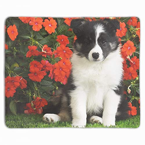 Shetland Sheepdog Puppy Mouse pad Gaming Mouse pad for sale  Delivered anywhere in Canada