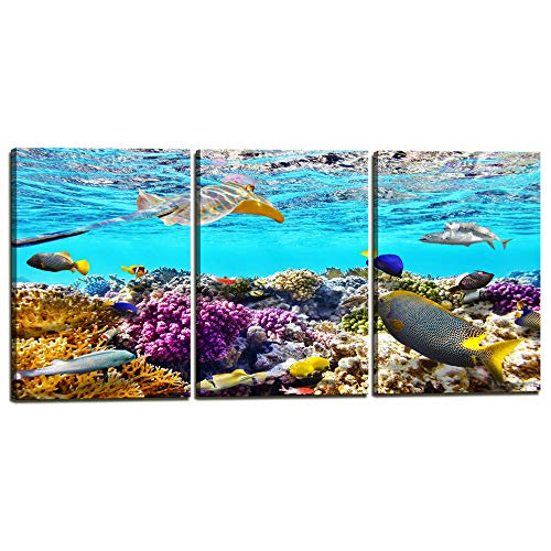 3 Piece Ocean Canvas Wall Art Mural Coral and Tropical Fish Colourful Underwater World Modern Home Wall Decor Stretched and Framed Artwork