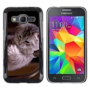 TopCaseStore / la caja del caucho duro de la cubierta de protección de la piel - Ragdoll Maine Coon Kitten Cat Feline - Samsung Galaxy Core Prime SM-G360