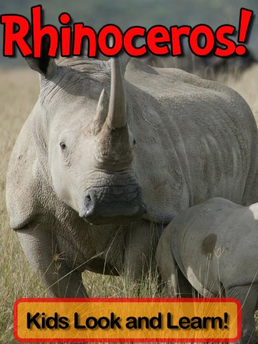 Rhinoceros! Learn About Rhinoceros and Enjoy Colorful Pictures - Look and Learn! (50+ Photos of Rhinoceros)