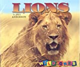 Lions, Jill Anderson, 1559719532