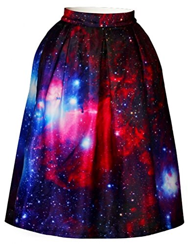 Alaroo Womens Printed Pleated Flared Midi Skirt