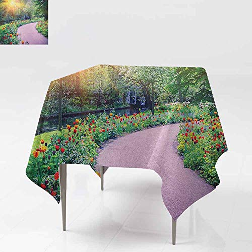 AndyTours Waterproof Table Cover,Garden,Spring Landscape with Colorful Tulips Keukenhof Garden in Netherlands Horticulture,Party Decorations Table Cover Cloth,70x70 Inch Multicolor