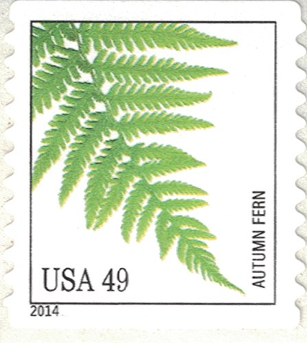 Strips of 10 Ferns USPS Forever Postage Stamps featuring a close up photograph of five different species of fern (10 Strips of 10 Stamps) Photo #6