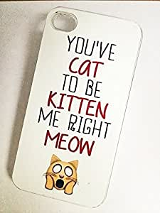 YOU'VE CAT TO BE KITTEN ME RIGHT MEOW Phone Case for iPhone 5 5S CLEAR Plastic by Maris's Diary