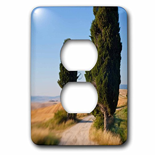 danita-delimont-italy-winding-road-val-d-orica-tuscany-italy-light-switch-covers-2-plug-outlet-cover