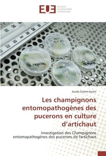les-champignons-entomopathogenes-des-pucerons-en-culture-dartichaut-investigation-des-champignons-en