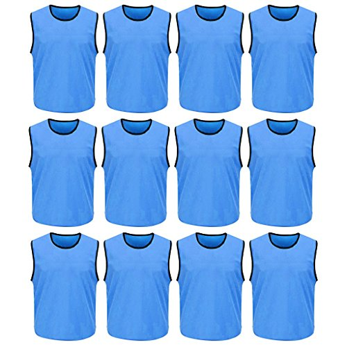 Polyester Training Bibs (DreamHigh 12 Pack Soccer Team Sports Training Vest Adult Sky Blue)
