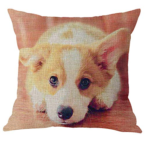 Animal Cute Funny Corgi Pet Dog Human Friend Cotton Linen Throw Pillow Covers Cushion Cover Decorative Sofa Bedroom Living Room Square 18 Inches