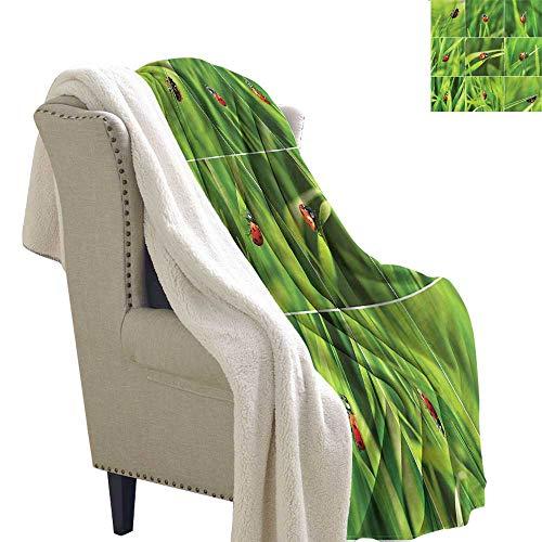 AndyTours Baby Blanket Ladybug Ladybug Over Fresh Grass Upgraded Thick Lazy Blanket Blanket W59 x L47