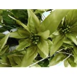 Green-Christmas-Poinsettia-Bush-24-Artificial-Silk-Flowers-24-Bouquet-030GN