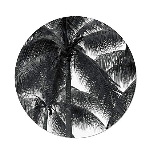 iPrint Polyester Round Tablecloth,Palm Tree Decor,Palm Tree Silhouette Exotic Plant on Dark Thema Foliages Relax in Nature Image,Black,Dining Room Kitchen Picnic Table Cloth Cover,for Outdoor Indoor