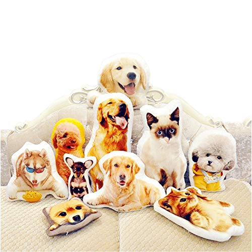 Customized Dog/Cat Pillow, Personalized People/Pet Shape Pillow (18 inches) (Personalized Cat Throw)