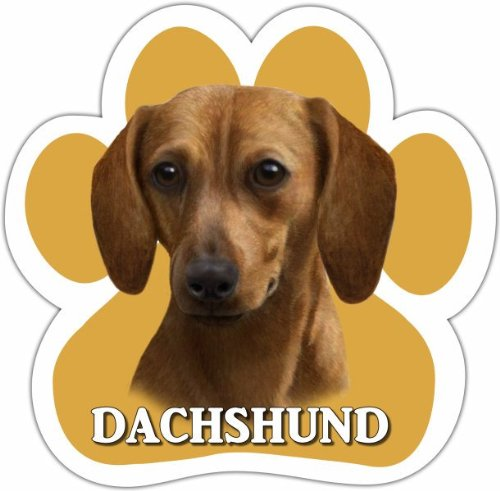 Dachshund, Red Car Magnet With Unique Paw Shaped Design Measures 5.2 by 5.2 Inches Covered In UV Gloss For Weather Protection - Dachshund Red Magnet