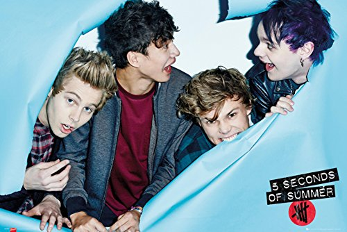 Seconds Summer Rip Poster 24in product image