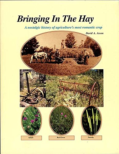 bringing-in-the-hay-a-nostalgic-history-of-agricultures-most-romantic-crop