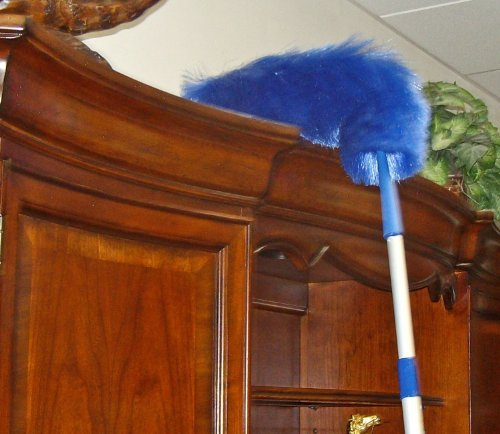 Eurow Electrostatic Duster with 3 sections extension pole
