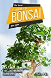 The Secret Techniques Of Bonsai Tree Care: The Complete Step By Step Guide for Beginners, Bonsai Book