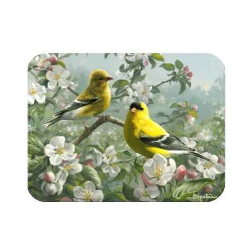 McGowan's 8-3/4-Inch by 11-3/4-Inch TuffTop Orchard Goldfinch Cutting Board - Orchard Glass Cutting Board