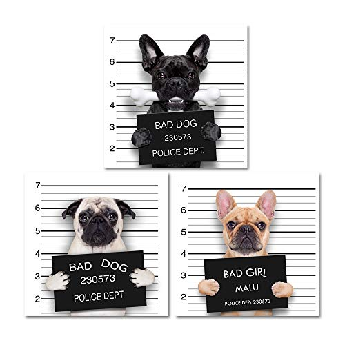 Cool Wall Canvas Art, Bad Dog Collection, Ideal for Home Or Office Wall Decor Set of 3 Paintings, 48'' x 16'' Overall Collection 16' Wide Wall