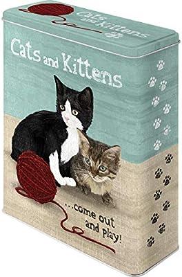 Nostalgic-Art Caja metálica de Estilo Retro - Cats and Kittens ...