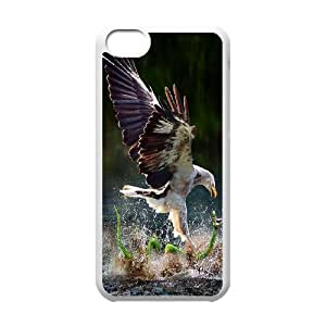 High Quality Phone Back Case Pattern Design 15Flying Eagles- For Iphone 5c
