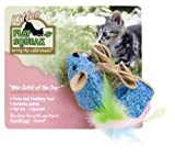 Play-N-Squeak Wee Catch of the Day Squeaking Kitten Toy, My Pet Supplies