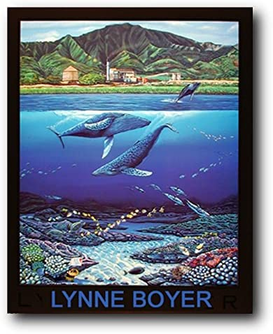 Amazon Com Tropical Whale Dolphins Underwater Coral Reef Wall Decor Art Print Poster 16x20 Ocean Life Posters Posters Prints