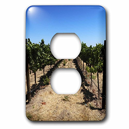 3dRose Tory Anne Collections Photography - SONOMA CALIFORNIA WINE VINEYARD - Light Switch Covers - 2 plug outlet cover (lsp_273529_6) (Sonoma Clock)