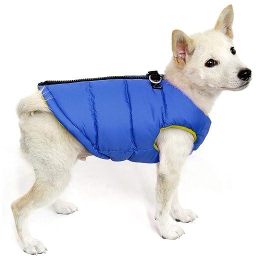 Amazon.com: Gooby - Chaleco acolchado, chaqueta para perro ...