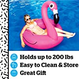 BigMouth Inc Pink Flamingo Pool float, inflates to over 4ft. wide
