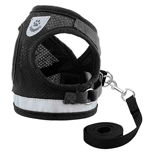 Reflective Mesh Sport Harness - Didog Reflective Dog Cat Vest Harness and Leash Set for Kitten Small Dogs,Escape Proof Mesh Puppy Harnesses for Walking Cat and Small Dogs,Black,L Size